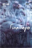 FLAMINGO (2 DVD)